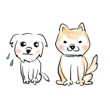 可愛い犬のイラストが好き