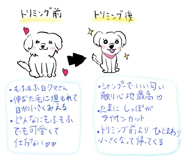 トリミング前と後の犬のイラスト。