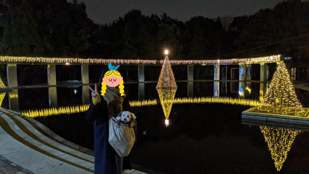多摩センターイルミネーションの写真。公園もイルミネーションされています。